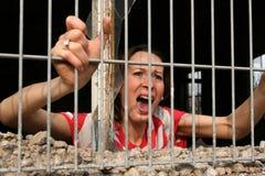 Woman behind bars Stock Photography