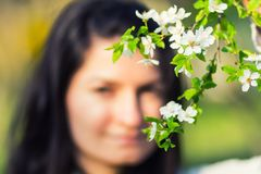 Woman behind blooming tree Royalty Free Stock Photos