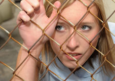 Woman Behind Fence Royalty Free Stock Images