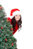 Woman behind the fur tree Stock Image