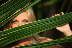 Woman behind the palm leaves stock image