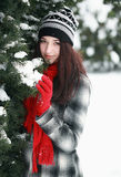 Woman behind snow covered pine tree Stock Photography