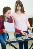 Woman being taught xylophone. Woman being taught the xylophone Stock Photography