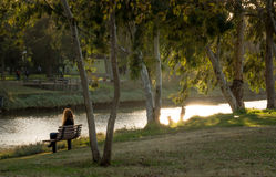 A woman on a bench in the park. A woman sitting on a bench by the water in the park at sunset Royalty Free Stock Photos