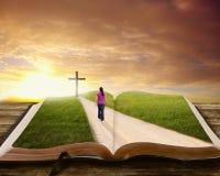 Woman on Bible. Stock Photos