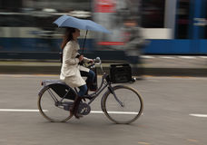 Woman on bicycle. Amsterdam, Netherlands- October 30th, 2011:Panning image of a young woman with umbrella riding her bicycle in a street in Amsterdam. Amsterdam Stock Photos