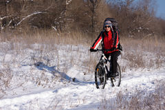 Woman on the bicycle. In winter Royalty Free Stock Photography