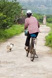Woman on Bicycle with Dog Royalty Free Stock Images