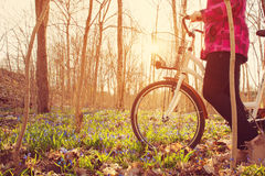 Woman on a bicycle in the forest in spring. At evening with beautiful sunlight Stock Photo