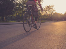 Woman on bicycle at sunset Royalty Free Stock Photos