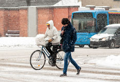 Woman on the bicycle in winter Stock Image