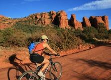 Woman bicycling Stock Image