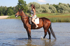 Woman with big brown horse Stock Photo