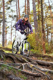 Woman on bike in forest Stock Photography