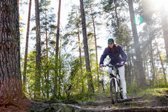 Woman on bike in forest Stock Photos