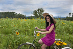 Woman on bike with sunflowers Stock Image