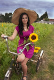 Woman on bike with sunflowers Royalty Free Stock Photo