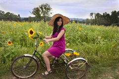 Woman on bike with sunflowers Royalty Free Stock Photos