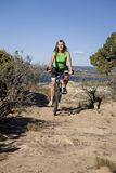 Woman on bike on trail Royalty Free Stock Image
