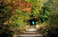Woman Biking on New England Rail Trail in Autumn. A woman in a blue windbreaker rides a mountain bike down a rail trail that leads into a colorful wood. Photo stock photography