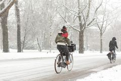 Woman biking in a snowy Amsterdam Vondelpark. Stock Photos