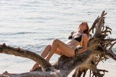 Woman in bikini posing on branchy log in water Royalty Free Stock Photos