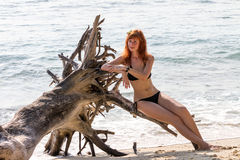 Woman in bikini posing on branchy log in water Stock Photography
