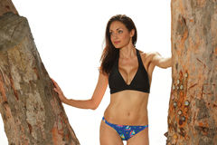 Woman in a bikini posing by trees Stock Images