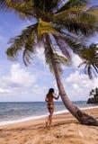 Woman in Bikini Standing Near Tree on Beach Under Cloudy Skies stock image