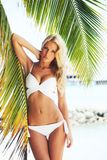 Woman in bikini under palm Royalty Free Stock Images