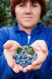Woman with bilberry in her hands Stock Images