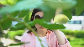 Woman with binoculars hiding behind trees, journalist searching for sensation. Stock footage stock video
