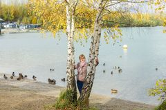 A woman between the birches Royalty Free Stock Photography