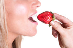 A woman biting a juicy delicious strawberry. A woman biting a juicy delicious red strawberry Stock Photos