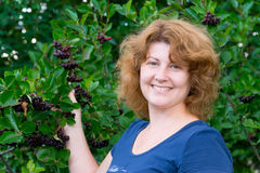 Woman in a black chokeberry bush in the garden Stock Photos