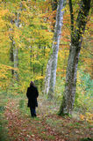 Woman with black coat walking in a forest Royalty Free Stock Photos