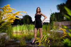 Woman in black dress posing on riverbank Stock Image