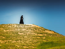 Woman in black dress Stock Images