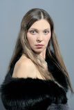 Woman in black fur 2 Stock Images