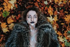 Woman in Black Fur Coat Laying on Brown Maple Leaves royalty free stock photos