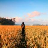 Woman in Black Hijab Headscarf Walking on Field royalty free stock photography