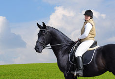 Woman and black horse. In field Stock Images