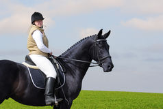 Woman and black horse. In field Royalty Free Stock Photography