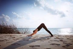 Woman in black jumpsuit doing yoga Sun salutation Surya Namaskar. Healthy life exercise concept - Young sporty fit woman in black jumpsuit doing Downward-Facing Royalty Free Stock Image