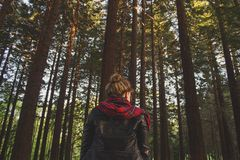 Woman in Black Red Jacket in the Middle of the Woods during Daytime Royalty Free Stock Photo