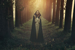 Woman with black robe in a surreal forest Stock Photos