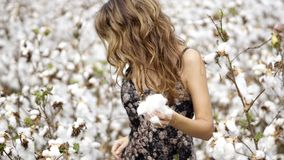 Woman in Black and White Floral Dress Holding Cotton royalty free stock photos