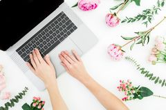 Woman blogger typing on laptop. Workspace with female hands, laptop and pink flowers on white background. Top view. Flat lay stock photography