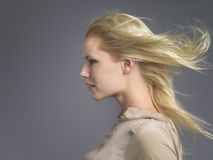 Woman With Blond Hair Blowing In Wind. Closeup side view of a young woman with blond hair blowing in wind against gray background stock photo