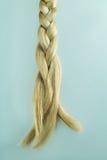 Woman blond hair, braid Stock Image